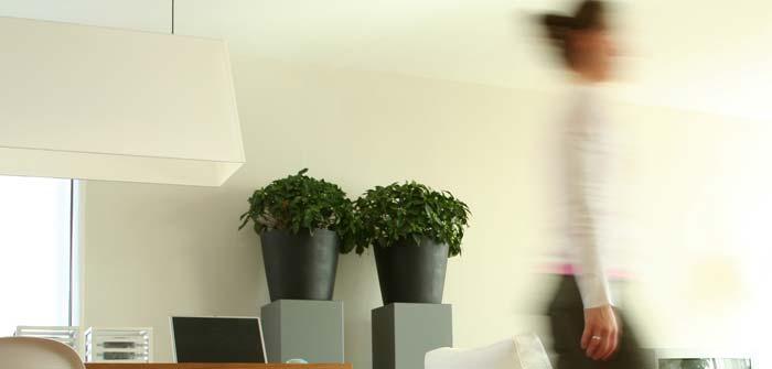 Pflanzen Deko: Ideen für Wohnung und Garten