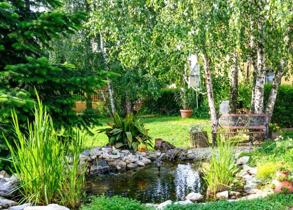 Ein kleiner Gartenteich zur Entspannung (#1)