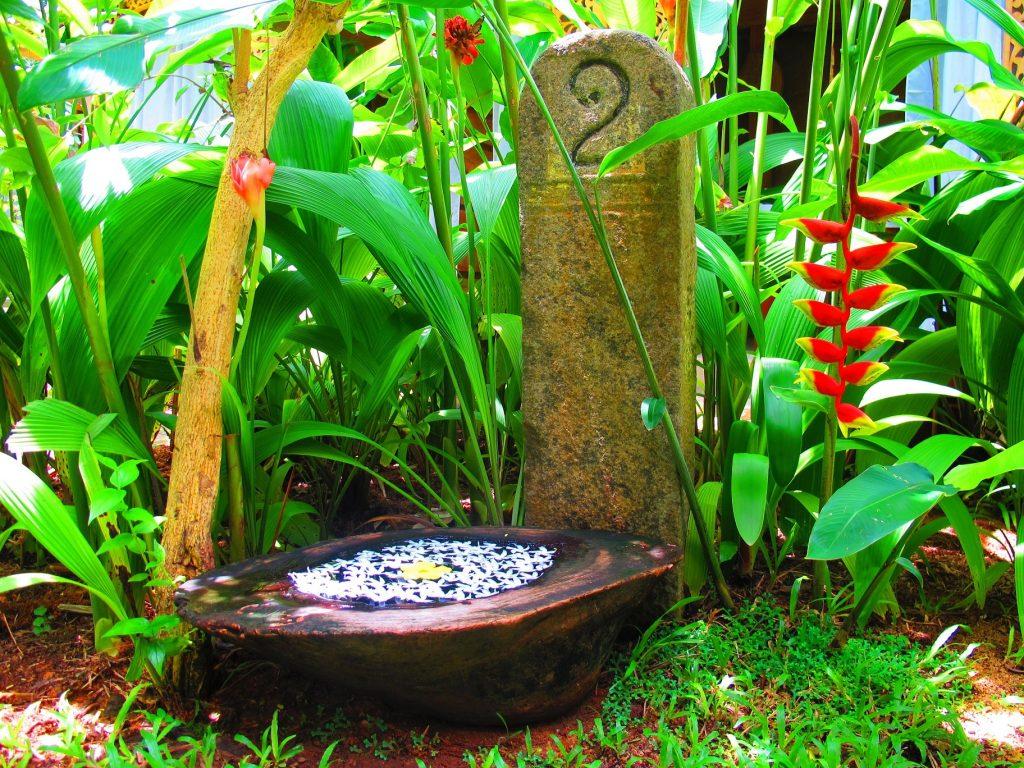 Tropengarten: Die tropische Gartengestaltung zeichnet sich durch große Pflanzen wie Palmen, Bananenstauden und Kletterpflanzen aus. (#02)