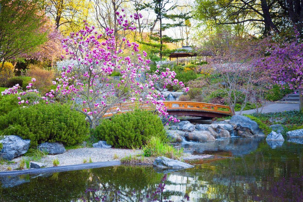 Der japanische Garten hat eine besonders lange Tradition: seit dem 14. Jahrhundert stellt diese Form der Gartengestaltung die Verdichtung des Universums auf kleinstem Raum dar. (#03)