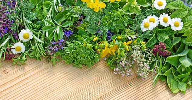 Pflanzen Sie dazu zum Beispiel Kamille, Rosmarin und Thymian ringförmig um die Beete, um die innenliegenden Pflanzenarten zu schützen. (#02)