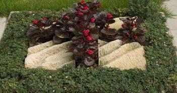 Grabgestaltung: 20 Ideen für schöne Gräber