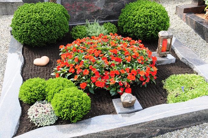 Hier wird auf die große Blume in der Mitte des Grabes gesetzt, sie ist Anziehungspunkt für das Auge und bringt durch den farblichen Kontrast auch den Grabstein sowie die Buchsbäumchen zur Geltung. (#05)