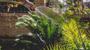 Die DIY-Pumpe kann durchaus einige Liter Wasser fördern. Das genügt vielleicht nicht, einen Acker zu bewässern, aber für das Kräuter- oder Gemüsebeet zu bewässern kann es schon genug sein. (#3)