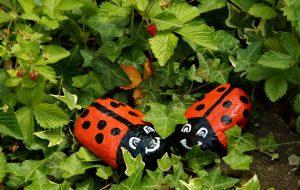 Eine süße Marienkäfer-Familie aus Steinen bereitet vor allem auch den Kindern Freude - beim Basteln und später beim Spielen im Garten. (#1)