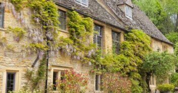 Rankhilfen: Kletterpflanzen befestigen und stützen