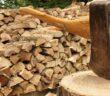 Brennholz Preise: Weiter steigend