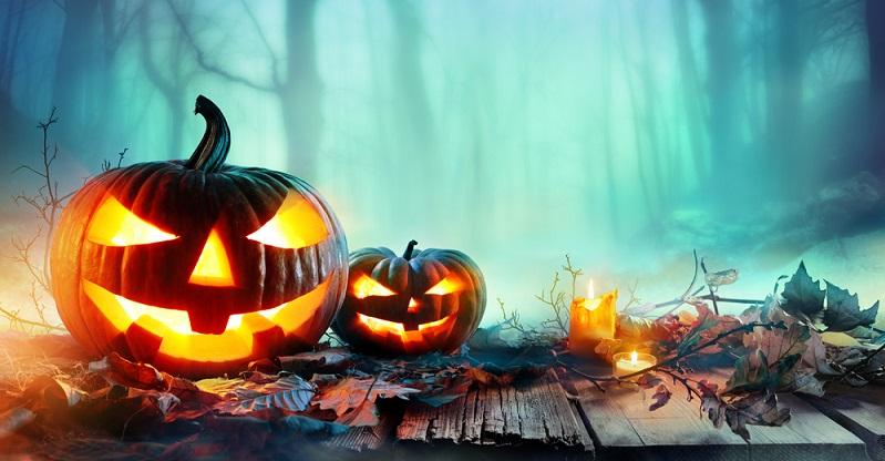 Spätestens zu Halloween beginnt die Zeit der Kürbisse. Mit ihren unterschiedlichen Formen und Farben bieten sie sich perfekt als County Line Dekoration an, ob man sie aushöhlt oder nicht. (#02)