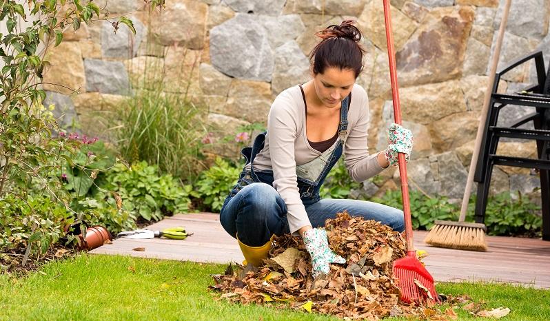 Warten Sie mit dem Einsammeln der Blätter jedoch am besten den ersten Frost ab. Dieser sorgt dafür, dass das meiste Laub abfällt. (#02)
