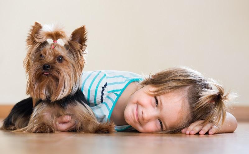 Bei der Auswahl des Bodenbelags spielt es auch eine Rolle, ob Kinder oder Haustiere im Haushalt leben. (#01)