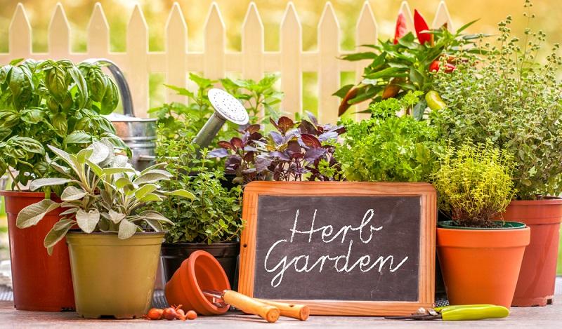 Eine optisch ganz besonders ansprechende Gartendeko, die zudem vielseitig ist und auf verschiedene Weise umgestaltet werden kann, ist die Blumentorte. (#04)