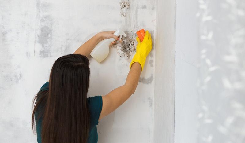 Geld leihen und verleihen: Oft handelt es sich auch um unvermutete Schäden, die die Renovierungskosten in die Höhe treiben. (#02)