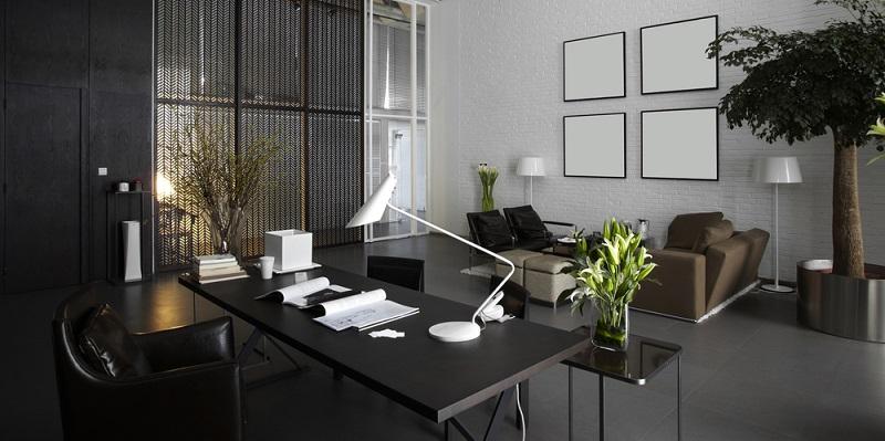 Büropflanzen gehören ebenfalls dazu und lassen den nüchternen Raum ein wenig wohnlicher erscheinen. Ganz nebenbei verbessern sie noch das Raumklima. (#06)