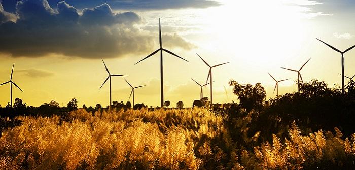 Ökostrom grüner Stromanbieter: Die wichtigsten Fakten