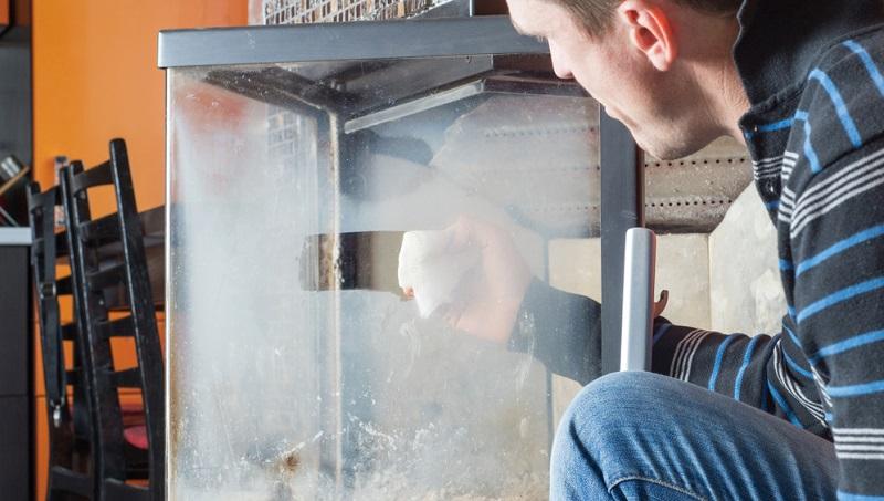 Wie bereits gesagt wurde, sollten Sie mit scharfen Reinigern vorsichtig sein. Diese greifen die Oberfläche an. Prüfen Sie die Verträglichkeit von Material und Reiniger zuerst an einer Stelle, die nicht zu sehen ist.(#05)