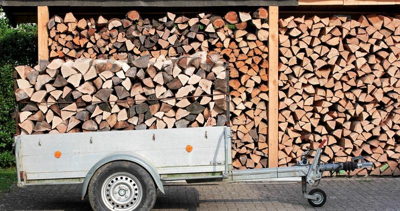 Das Heizen mit dem nachwachsenden Rohstoff Holz liegt im Trend. Besonders nachhaltig ist die Verwendung von Holz aus der Region, denn dann entfallen lange Transportwege.