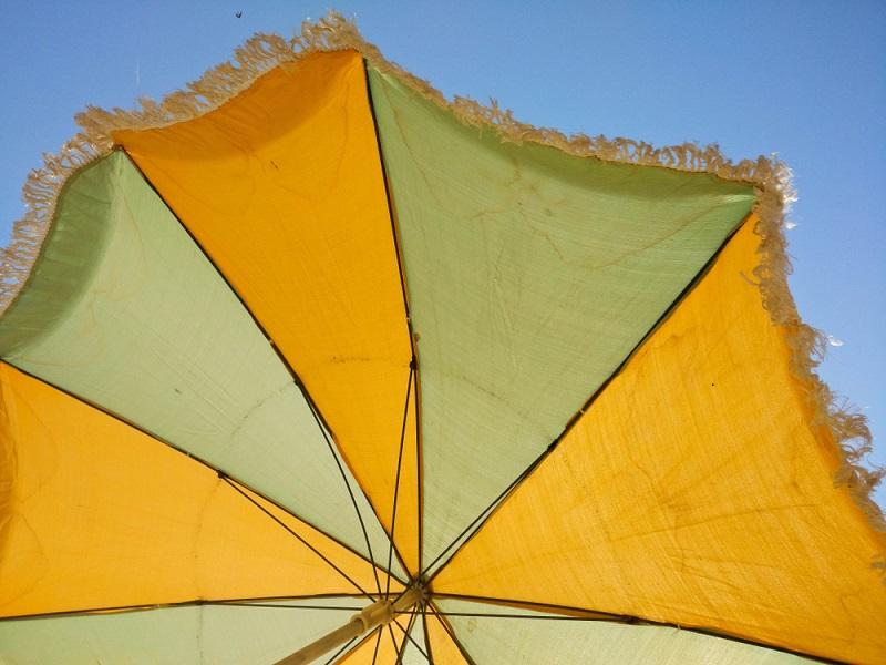 Erdbienen nicht totschlagen, einen Schirm tut es meist auch.