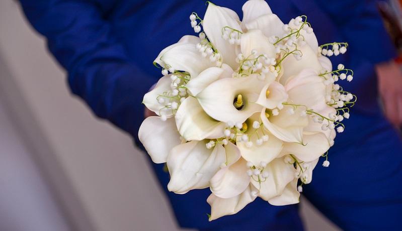 Lilien sehen majestätisch aus und duften meist ebenso herrlich. Ihr elegantes und romantisches Aussehen macht sie zu einer beliebten Blume für allerlei Anlässe. So findet sie Verwendung: auf Hochzeiten und in HochzeitssträußeLilien sehen majestätisch aus und duften meist ebenso herrlich. Ihr elegantes und romantisches Aussehen macht sie zu einer beliebten Blume für allerlei Anlässe. So findet sie Verwendung: auf Hochzeiten und in Hochzeitssträuße