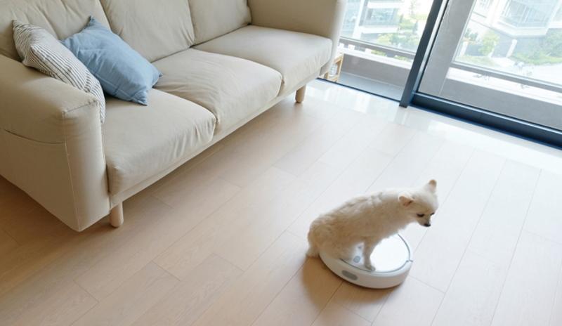 Saugroboter im Test: Die Haustiere haben hierfür wohl ihre ganz eigenen Kriterien (Foto: Shutterstock - leungchopan)