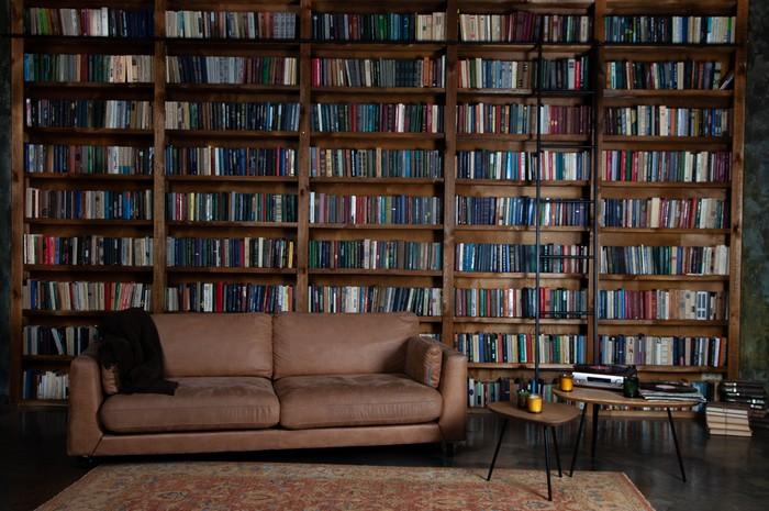 Eine Bibliothek ist ein Raum, in welchem man in erster Linie ungestört seinen Gedanken nachhängen kann. Ob man dabei in seinen Büchern blättern oder lieber eine Tasse guten Tee genießen will, sei jedem überlassen. Für Viele, die sich diese monetär betrachtet kleine Freiheit nicht zugestehen, mutet dieses selbstachtende Verhalten wie Luxus an. Wer sein haus zum Luxus-haus aufwerten möchte, der trifft mit einem Bibliotheksraum sehr zielsicher den Statussensor vieler Besucher. Dabei kostet es nur Mut und gar kein Vermögen...  (Foto: shutterstock - Real_life_Studio)