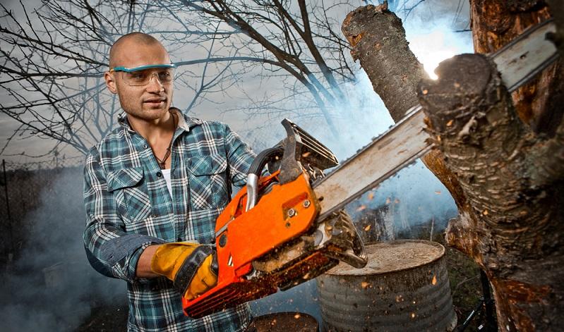 Natürlich ist für jeden Grundstücksbesitzer die eigene Motorsäge wichtig. ( Foto: Shutterstock-Walllenrock)