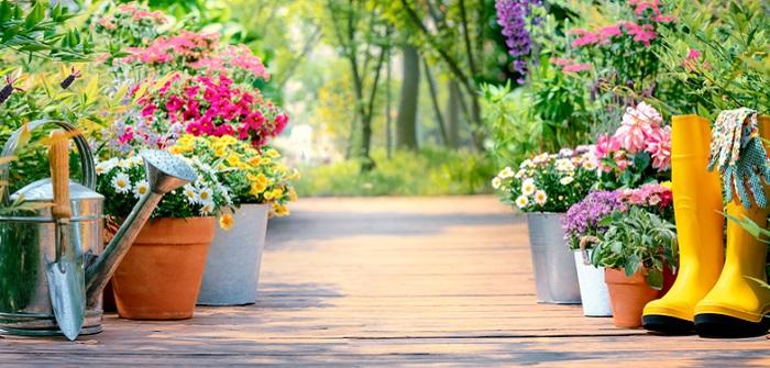Gartengeräte: Bilder und Namen (Liste vom Profi) und 7 Maschinen, die Du wirklich brauchst! ( Foto: Shutterstock-_ fotohunter )