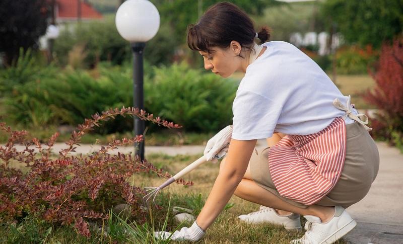 Die tollste Idee für die Gartenparty wird nicht wirken können, wenn keine entsprechenden Vorbereitungen im Garten getroffen wurden. ( Foto: Shutterstock-  Parilov_)