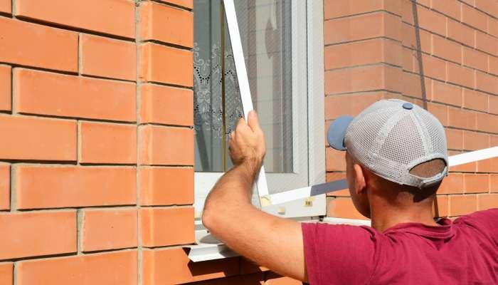 Zugegeben, eine gänzlich insektenfreie Wohnung dürfte schwer zu erreichen sein.( Foto: Shutterstock-Radovan1 )